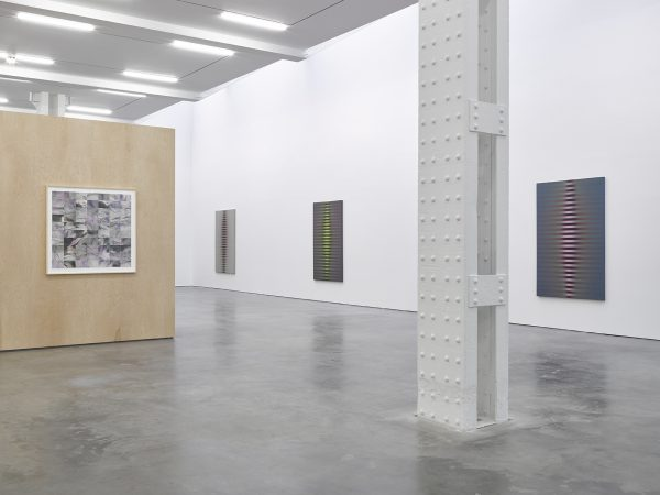 Roy Colmer at Lisson Gallery