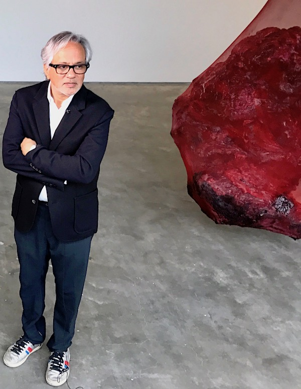 Anish Kapoor Sues NRA Over Copyright Infringement