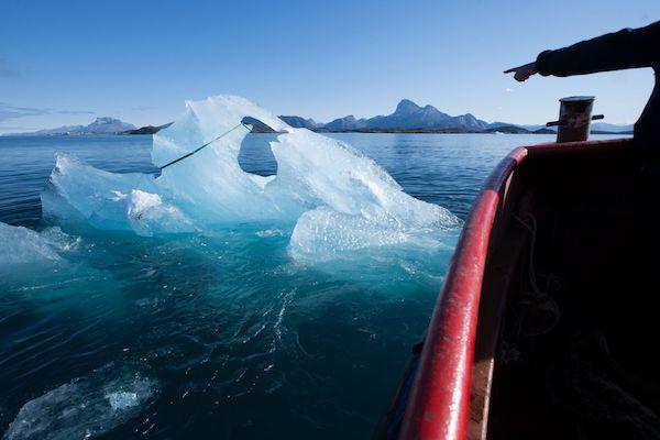 Olafur Eliasson Ice Watch