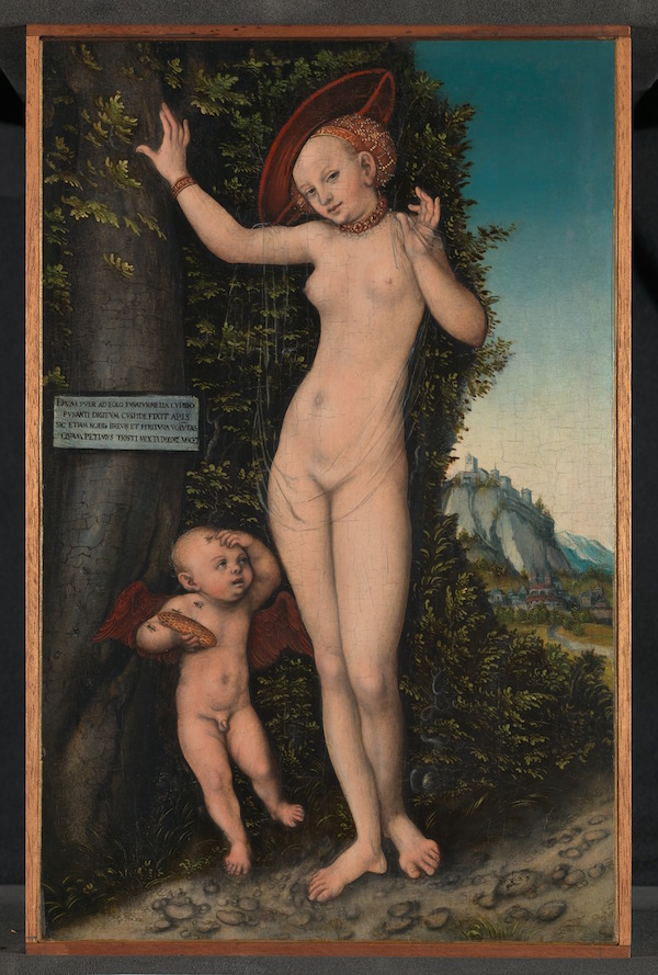 Venus and Cupid (1529) by Lucas Cranach the Elder (1472–1553)