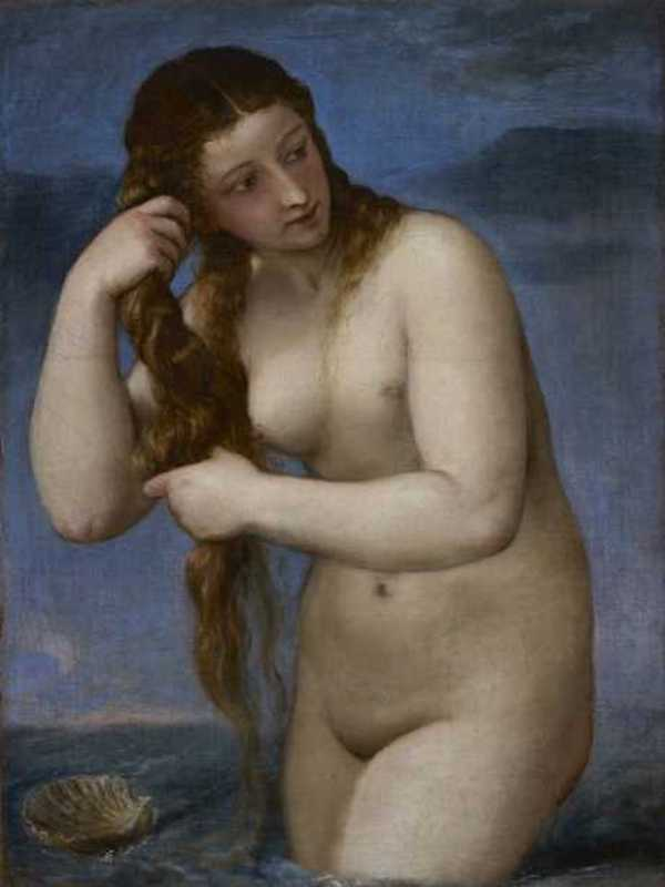 """Venus Rising from the Sea"" (Venus Anadyomene), c. 1520,"