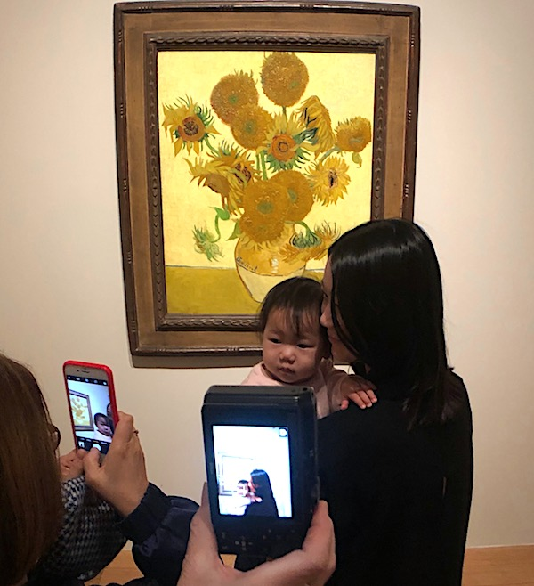 Van Gogh Sunflowers 1879 P C Robinson