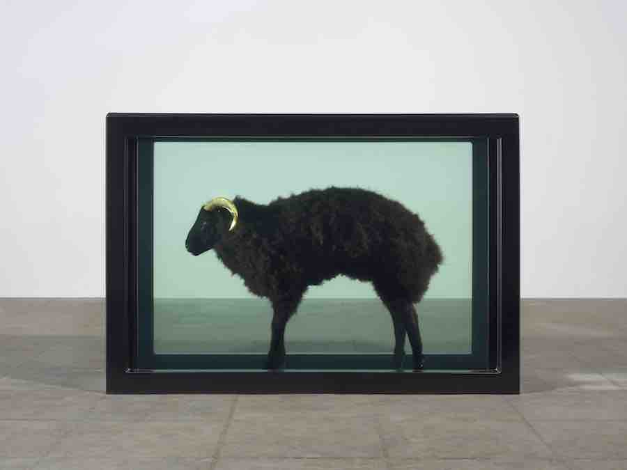 Damien Hirst, Black Sheep with Golden Horns, 2009 Photographed by Prudence Cuming Associates © Damien Hirst and Science Ltd. All Rights Reserved, DACS 2019