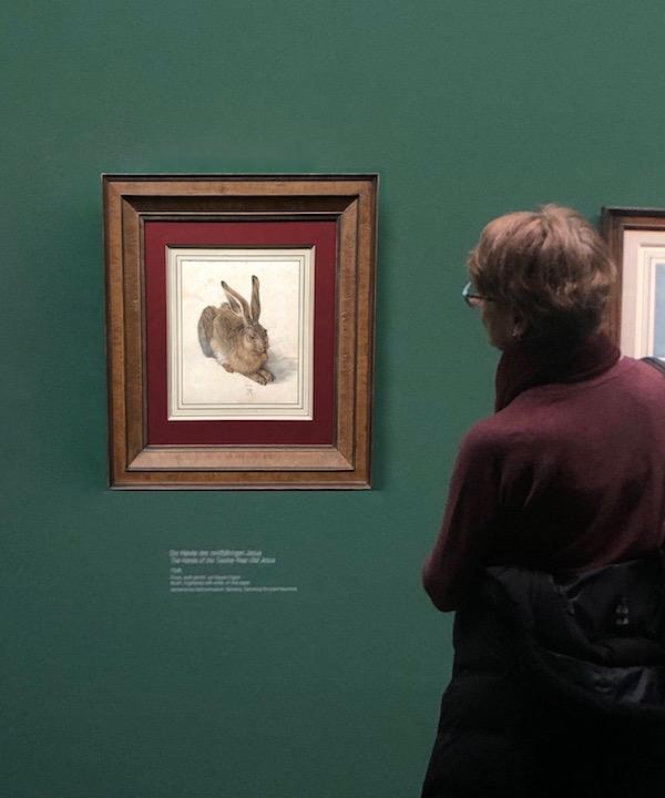Albrecht Dürer - Albertina Museum Vienna