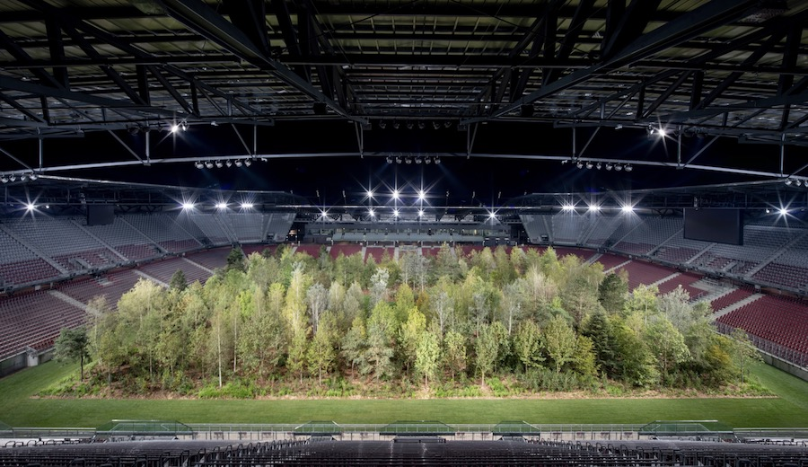 'For Forest – The Unending Attraction of Nature' which took place in Klagenfurt, Austria in 2019